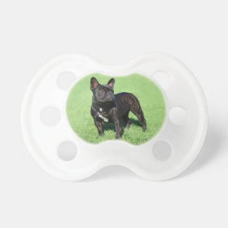 French Bulldog 2 Pacifier