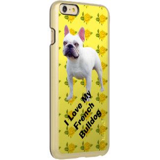 French Bulldog and yellow roses