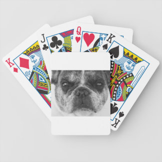 french-bulldog bicycle playing cards