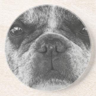 french-bulldog coaster