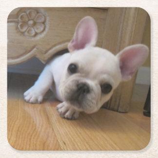 French Bulldog Coaster