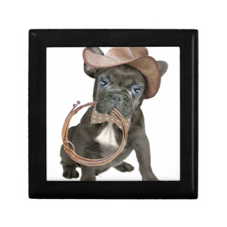 FRENCH BULLDOG country boy Gift Box