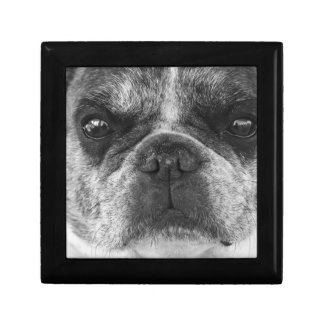french-bulldog gift box