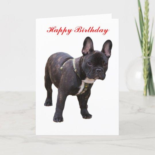 French Bulldog Happy Birthday Greeting Card Zazzleca
