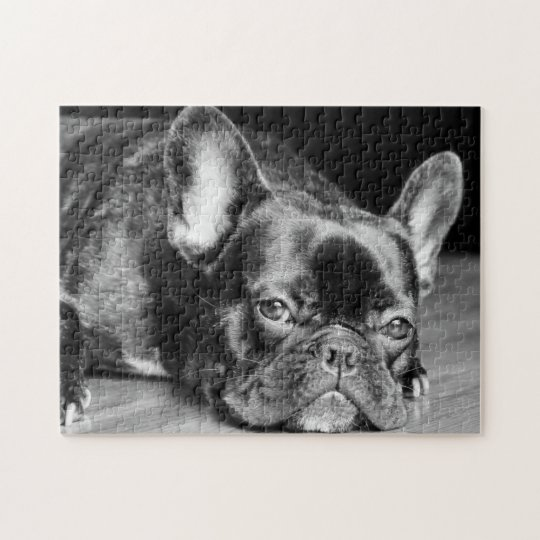 French Bulldog Jigsaw Puzzle