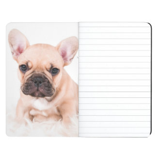 French Bulldog Journal