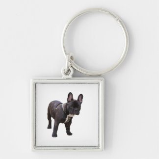 French Bulldog keychain, giftt idea Keychain