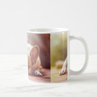 french bulldog laying coffee mug