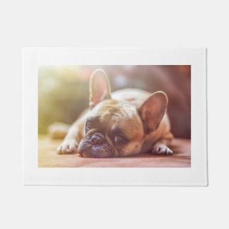 french bulldog laying doormat