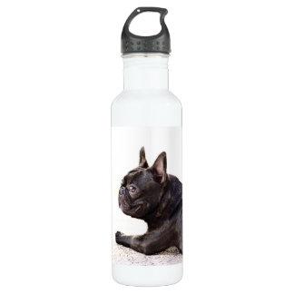 French Bulldog Liberty 710 Ml Water Bottle
