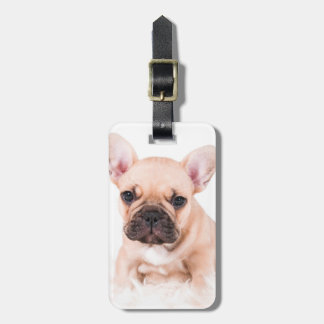French bulldog. luggage tag