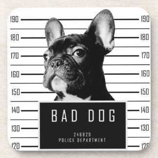 French Bulldog Mugshot Shirt Coaster