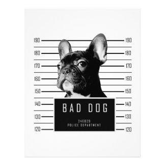 French Bulldog Mugshot Shirt Letterhead