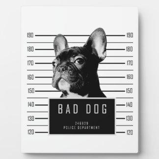 French Bulldog Mugshot Shirt Plaque