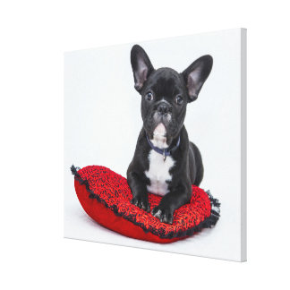 French bulldog on cushion canvas print
