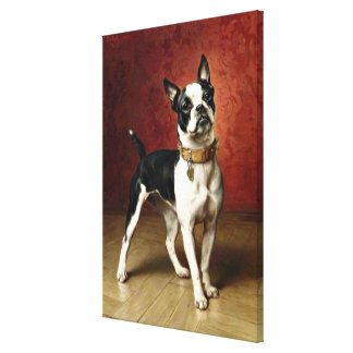 French Bulldog - painting by Carl Reichert Canvas Print