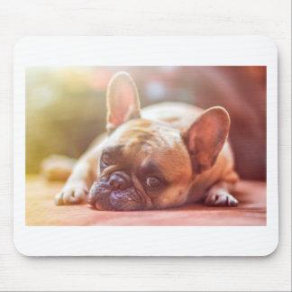 French Bulldog Pet Mouse Pad