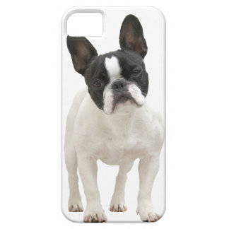 French Bulldog photo iPhone 5 mate case, gift idea iPhone 5 Case