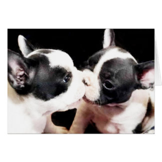 French bulldog puppies card