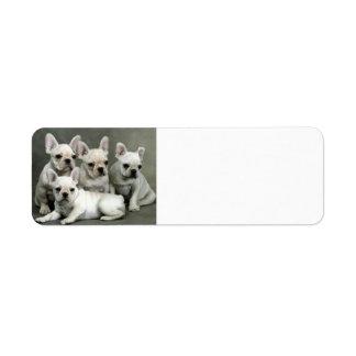 French Bulldog Puppies Return Address Label
