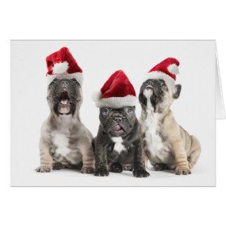 French bulldog puppies sing wearing Santa hats Card