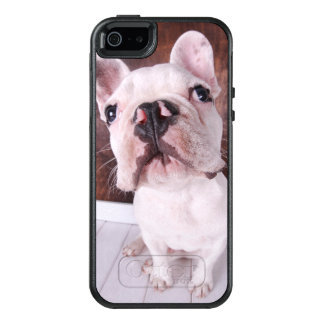 French Bulldog Puppy (7 Months Old) OtterBox iPhone 5/5s/SE Case