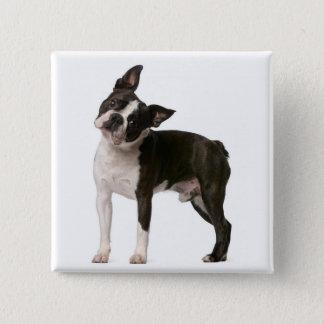 French bulldog - puppy dog - frenchie dog 2 inch square button