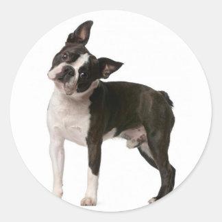 French bulldog - puppy dog - frenchie dog classic round sticker