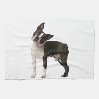 French bulldog - puppy dog - frenchie dog kitchen towel