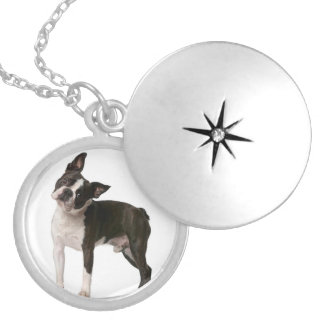 French bulldog - puppy dog - frenchie dog locket necklace