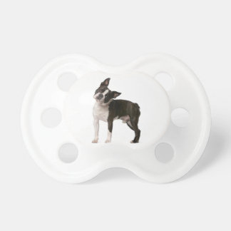 French bulldog - puppy dog - frenchie dog pacifier