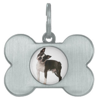 French bulldog - puppy dog - frenchie dog pet name tag