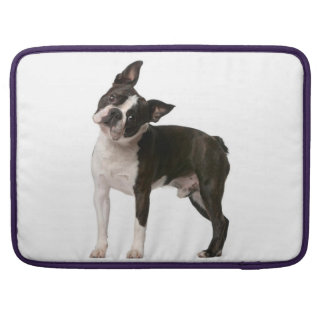 French bulldog - puppy dog - frenchie dog sleeve for MacBook pro