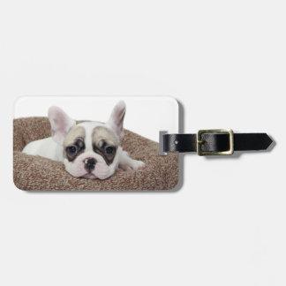 French Bulldog Puppy Lying In A Dog Bed Luggage Tag