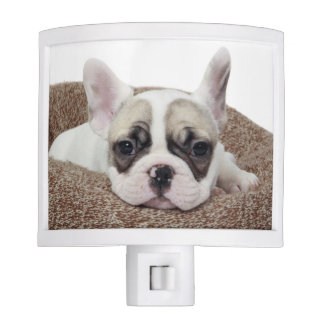 French Bulldog Puppy Lying In A Dog Bed Night Lites