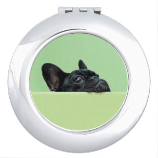French Bulldog Puppy Peering Over Wall Makeup Mirror