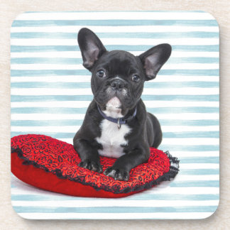 French Bulldog Puppy Portrait Coaster
