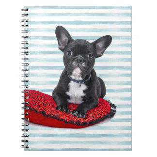 French Bulldog Puppy Portrait Notebook