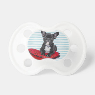French Bulldog Puppy Portrait Pacifier