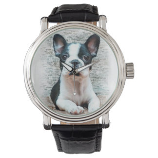 French Bulldog puppy Watch