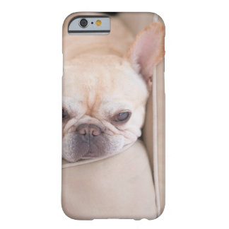 French bulldog resting on sofa barely there iPhone 6 case