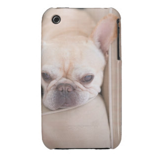 French bulldog resting on sofa iPhone 3 Case-Mate cases