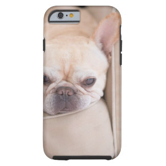 French bulldog resting on sofa tough iPhone 6 case