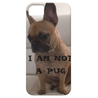 FRENCH BULLDOG ,SE + iPhone 5/5S, Barely There iPhone 5 Case
