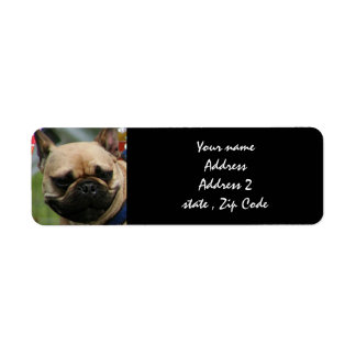 French Bulldog shipping labels