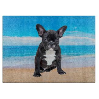 French Bulldog Sitting On Beach Boards