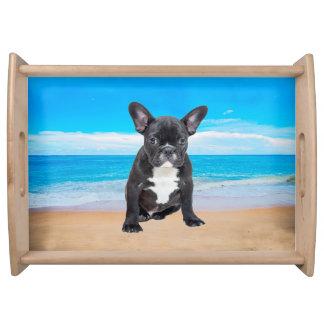 French Bulldog Sitting On Beach Serving Tray