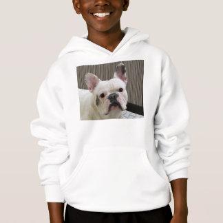 French_Bulldog white