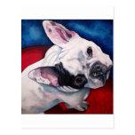 French Bulldog, White and Black Postcard