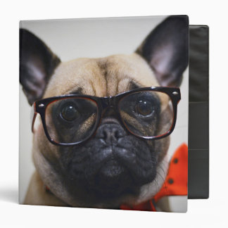 French Bulldog With Glasses And Bow Tie Binder
